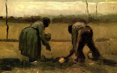 Migrant farm labourers 'like a scene from a Van Gogh painting' - Telegraph | Science, research and innovation news | Scoop.it