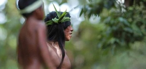Amazon Tribe Creates 500-Page Remarkable Natural Medicine Encyclopedia | Peer2Politics | Scoop.it