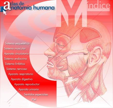 Atlas de Anatomía Humana | Aprendiendo a Distancia | Scoop.it