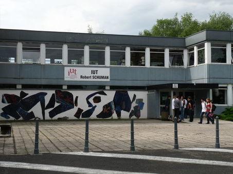 «On ne valorise pas assez l'insertion professionnelle des jeunes à court terme» | Veille Insertion professionnelle IUT d'Aix Marseille | Scoop.it