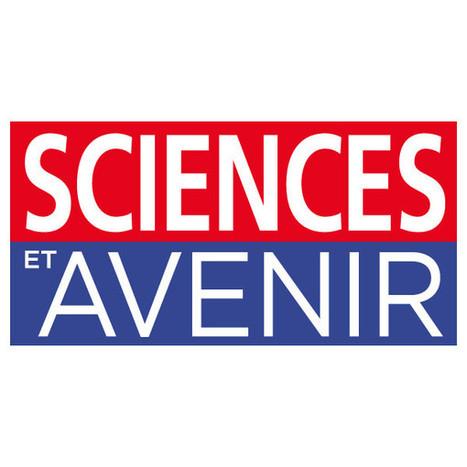 Attaques de requins à La Réunion : une enquête à voir sur Arte - Sciences et Avenir | Requins en Péril | Scoop.it