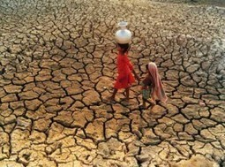 Quel statut pour le réfugié climatique ?   Questions climatiques   Scoop.it