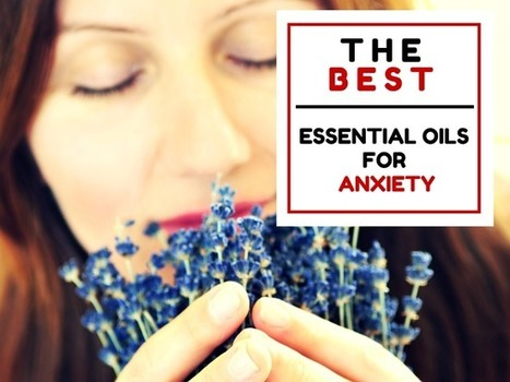 The 3 Best Essential Oils for Anxiety (These Can Work Fast!)   Natural Alternative Therapies   alternative health   Scoop.it