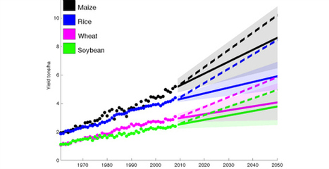 Will There Be Enough Food in 2050?   The World in 2050   Scoop.it