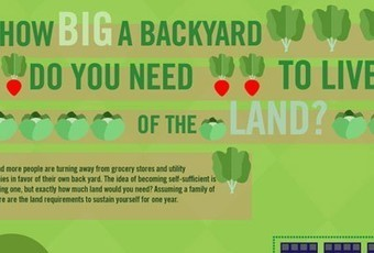 Infographic: How Much Backyard Is Needed To Feed A Family of Four? | Food & Farming | Scoop.it