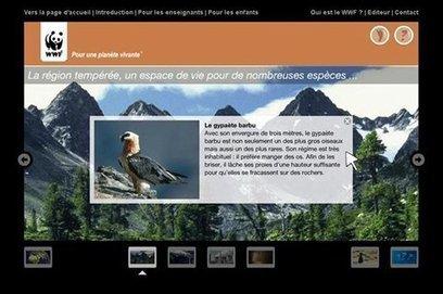 Explore ta planète, le nouveau site d'animation pédagogique du WWF pour sensibiliser les enfants à l'environnement - [CDURABLE.info l'essentiel du développement durable] | Génération en action | Scoop.it