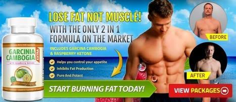 Garcinia Cambogia for Men - Buy Best Brand Online | Web Hosting | Scoop.it