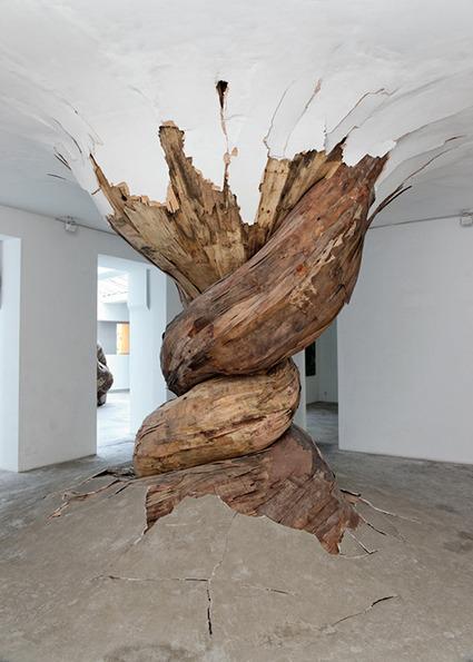 "Henrique Oliveira: ""Denatured""   Art Installations, Sculpture, Contemporary Art   Scoop.it"