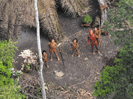 Uncontacted tribe in Brazil ends its isolation   Human Geography   Scoop.it