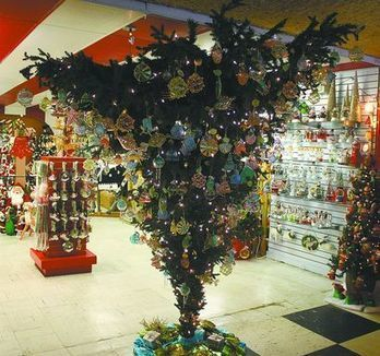 Christmas in July kicks off at the Shell Factory - Pine Island Eagle | Christmas Cat Ornaments and Cards | Scoop.it