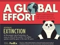 Nonprofit Infographics | Infographics: Examples | Scoop.it