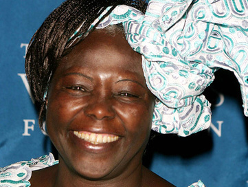"""""""I Will Disappear Into the Forest"""": An Interview With Wangari Maathai 