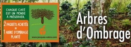 Brève : Achetez du café pour boiser la Colombie | Economie Responsable et Consommation Collaborative | Scoop.it