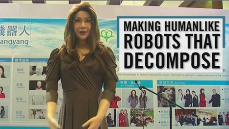 Des robots androïdes à la mort programmée | Une nouvelle civilisation de Robots | Scoop.it