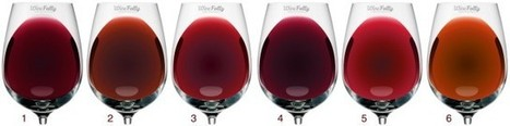 Host Your Own Blind Wine Tasting Party   Wine Folly   Wine n Beer Fun & Facts   Scoop.it