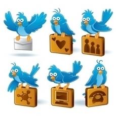Utiliser Twitter de manière pro - Trouver un emploi avec les réseaux sociaux   Alternance IUT   Scoop.it