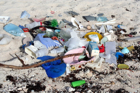 Australian waters polluted by harmful tiny plastics | Geography in the classroom | Scoop.it