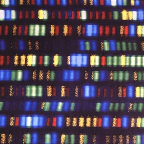 Your Full Genome Can Be Sequenced and Analyzed For Just $1,000 | Popular Science | DigitAG& journal | Scoop.it
