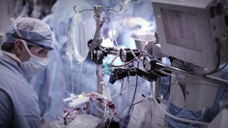 U.S. manages disease, not health | Food & Health 311 | Scoop.it
