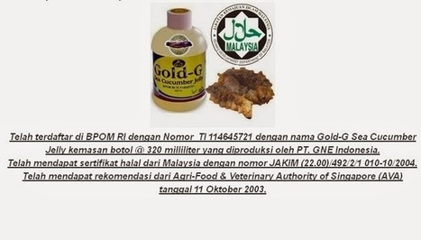 Cara Mengobati Sakit Perut Di Bawah Pusar  Toko Obat Herbal Jelly Gamat dan Ace Maxs   Health   Scoop.it