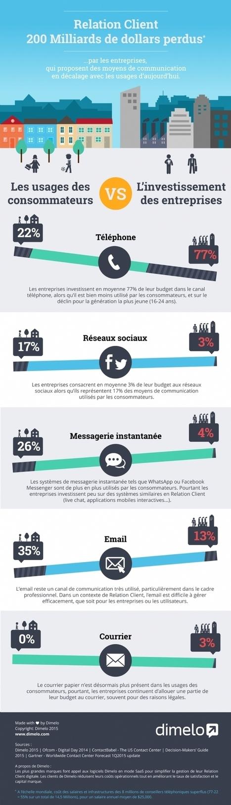 Infographie | Relation client inadaptée: 200 Mds $ perdus par les entreprises | ALTHESIA Conseil | Scoop.it