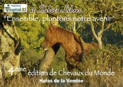 Le monde du cheval Le Haras de La Gesse - Cheval Savoir | éthologie équine | Scoop.it
