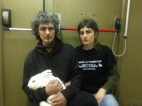 PHOTOS: Activists Wreak Havoc In Animal Lab | Direitos dos animais | Scoop.it