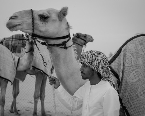 3 Days with the Fuji X-1 Pro in Dubai | Björn Moerman | Fuji X-Life | Scoop.it