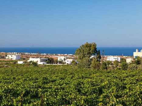Santorini @ The Hottest Wine Destinations of 2016 | Travel To Santorini | Scoop.it