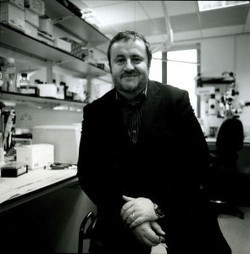 Pete Coffey: Driving stem cells to the clinic | Stem Cells & Tissue Engineering | Scoop.it
