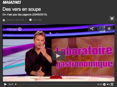 Des vers en soupe du 21 mai 2015, On n'est pas des pigeons ! : RTBF Vidéo | Entomophagy: Edible Insects and the Future of Food | Scoop.it