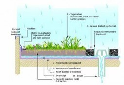 Green Roofs | Bronze Construction Services Inc. | GreenRoofs | Scoop.it