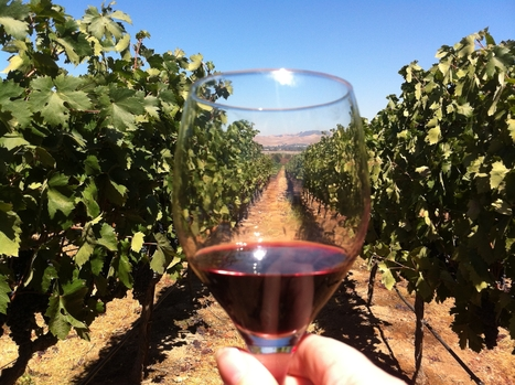 Livermore Valley Limo Wine Tour, Livermore Wine Tour | Bay Area Limo Wine Tour Service | Scoop.it