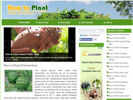 How To Plant | Hobby, LifeStyle and much more... (multilingual: EN, FR, DE) | Scoop.it