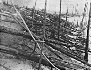 Rock samples suggest meteor caused Siberian Tunguska blast, biggest Earth impact in recorded history | Amazing Science | Scoop.it