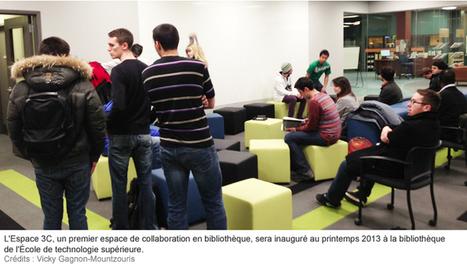 Vers une bibliothèque participative | Acfas | magazine Découvrir | mars 2013 | MuseAnt | Scoop.it