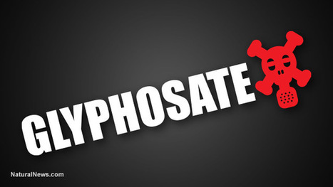 Malta fearlessly prepares to outlaw Monsanto's cancer-causing glyphosate, becoming first EU nation to enact complete ban | Liberty Revolution | Scoop.it