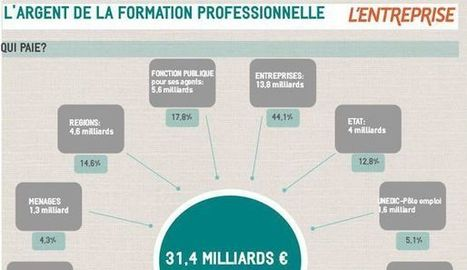 INFOGRAPHIE. L'argent de la formation professionnelle | 694028 | Scoop.it