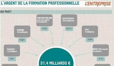 L'argent de la formation professionnelle [Infographie] I Ludwig Gallet , Nathalie Samson | Entretiens Professionnels | Scoop.it