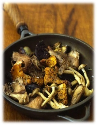 Fungi Culture — Recipes | sustainablehomes | Scoop.it