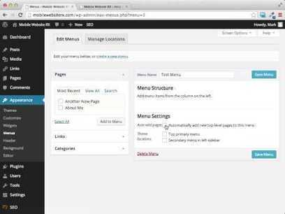 Wordpress Tutorial Ten | Wordpress For Beginners | General SEO | Scoop.it