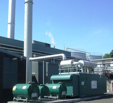 specifinder.com - ENER-G Combined Power Limited - North British Distillery wins national recognition for anaerobic digestion (AD) | AD News - Food & Waste | Scoop.it