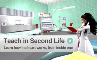 Second Life Education - Second Life Wiki | Teaching & Learning Resources | Scoop.it