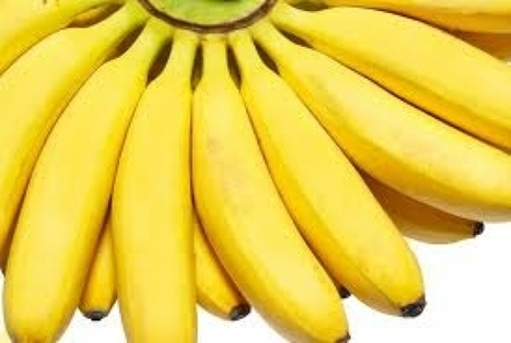 10 Best Health Benefits of Eating Banana You should know | Beautiful and Hottes girls | Scoop.it