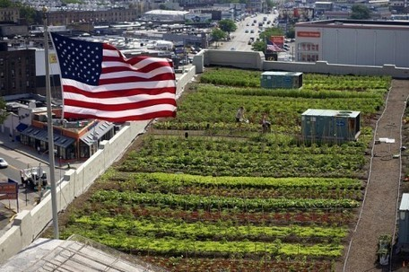 Rooftop Farms | Geography Education | Scoop.it