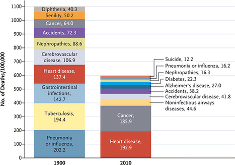 Fascinating comparison of the top 10 causes of death in 1900 and 2010 | News we like | Scoop.it