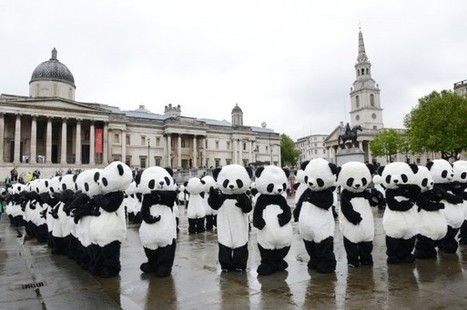 Défilé de pandas dans les rues de Londres ! | streetmarketing | Scoop.it