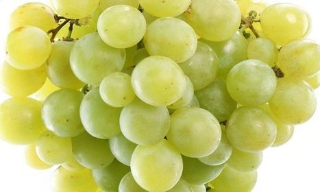 Carrots? No, it's grapes that are great for your eyes | zestful living | Scoop.it
