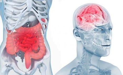 Une nouvelle thérapie «nettoie» les angoisses ... | GénérAction | Scoop.it