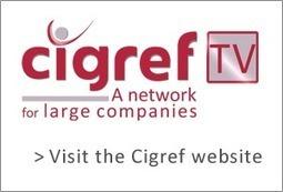 Cigref TV, Cigref -  Six contrasting scenarios for the design of the 2020 enterprise | Managing the Transition | Scoop.it